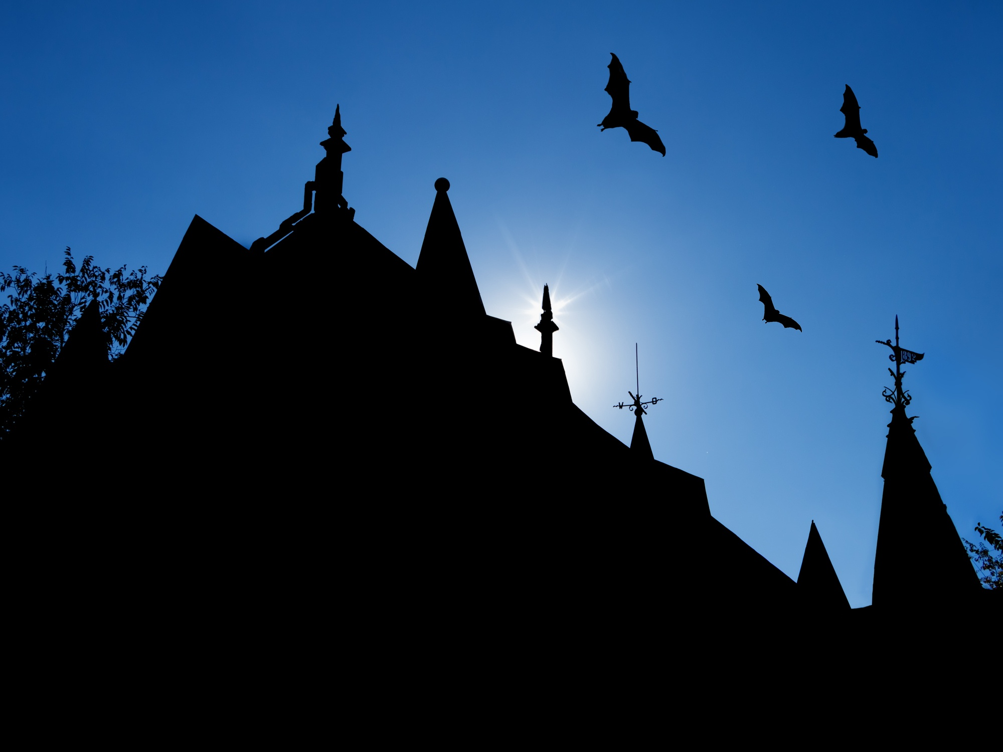 The Spookiest Facility Management Projects